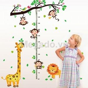 Decal thước đo chiều cao khỉ leo cây B197