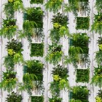 10m giấy dán tường 3D giả gỗ và ô vuông cây xanh D0019